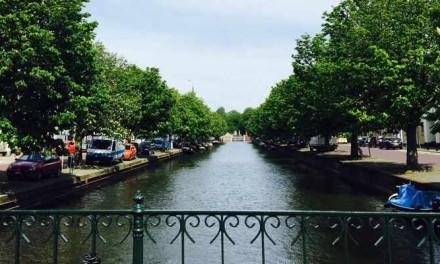 65 bezwaren tegen bomenkap Haags Zeeheldenkwartier