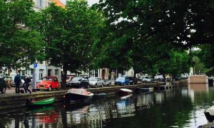 Kappen bomen Zeeheldenkwartier blijkt onnodig