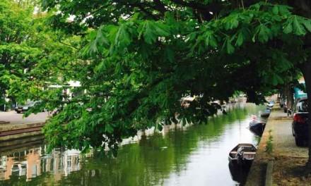 Zeeheldenkwartier stapt naar rechter voor bomen Veenkade