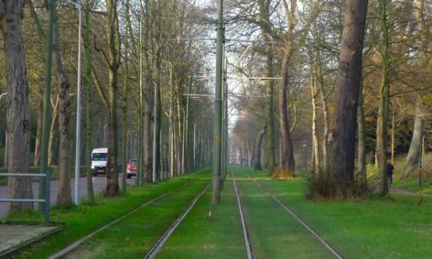 Internationale park Den Haag