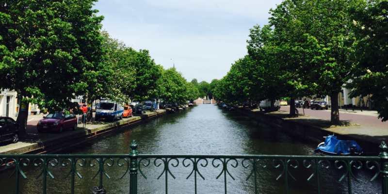 Veenkade Den Haag bomen kwestie