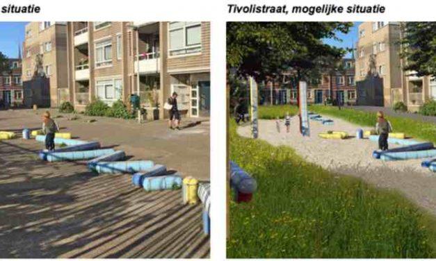 Tivolistraat winnaar groener Centrum