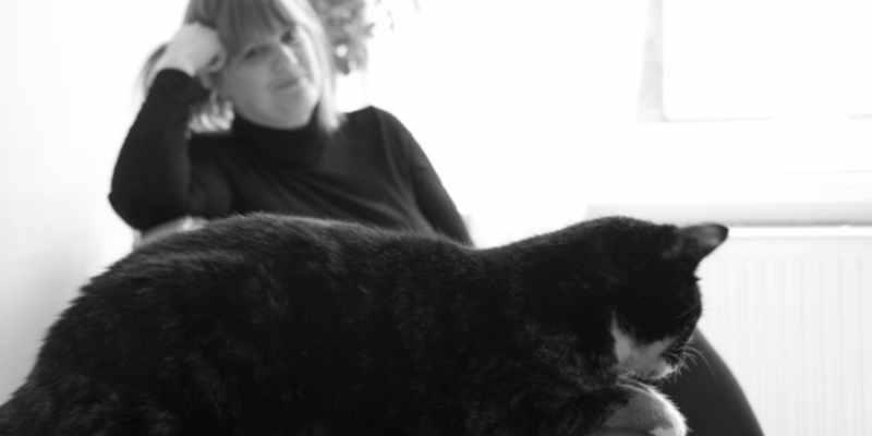 kattencafe den haag