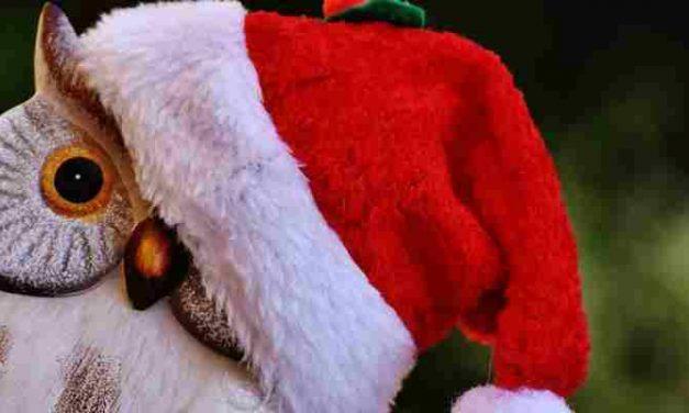 Kerstverhaal: Kerstmis, familie op z'n best