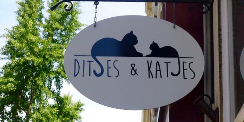 Ditjes en Katjes